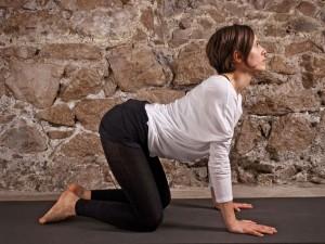Le-posizioni-yoga-Posizione-della-Tigre-SARDULASANA_o_su_horizontal_fixed (1)