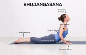 Bhujangasana-2