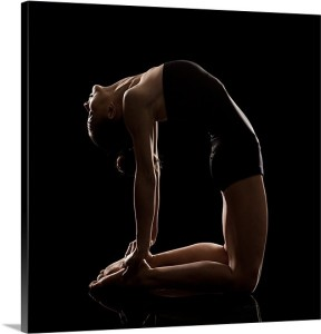 the-camel-pose-ushtra-asana,1000506