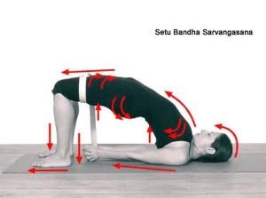 setu_bandha_sarvangasana